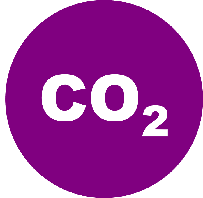 CO2RR badge 3